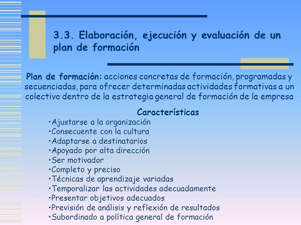 3.3. Elaboración, ejecución y evaluación de un plan de formación