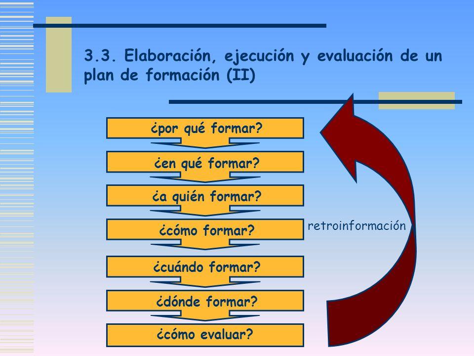 3.3. Elaboración, ejecución y evaluación de un plan de formación (II)