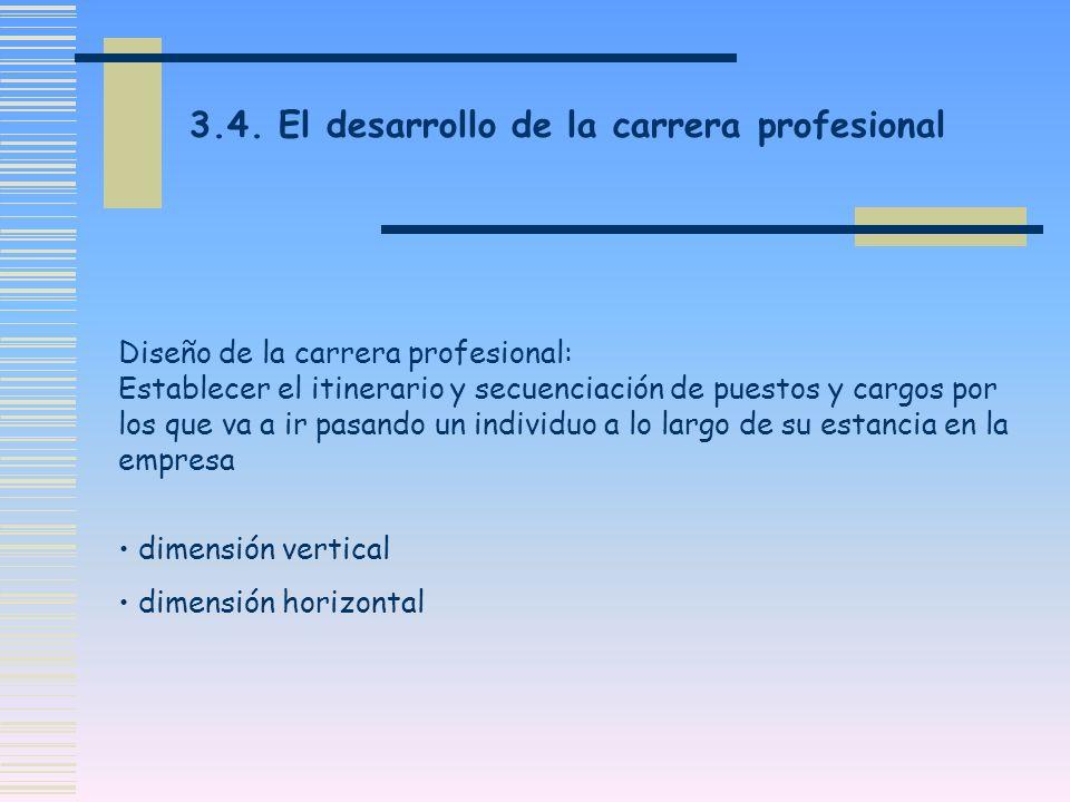 3.4. El desarrollo de la carrera profesional