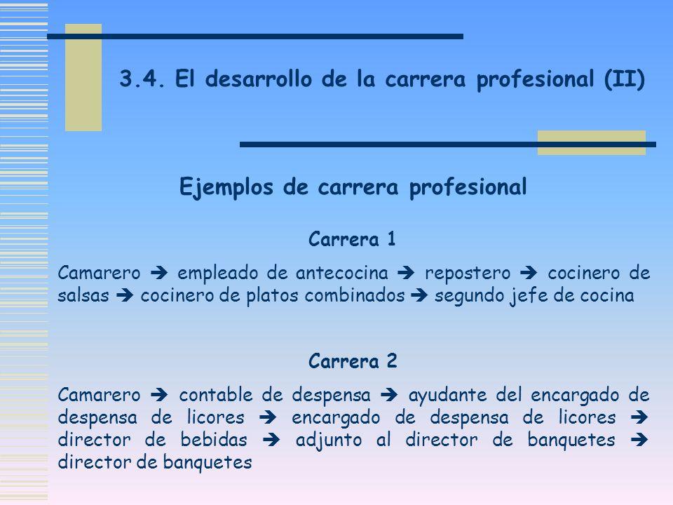 Ejemplos de carrera profesional