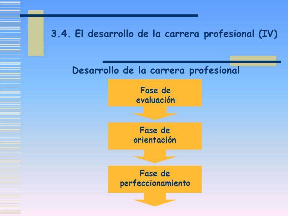 Desarrollo de la carrera profesional