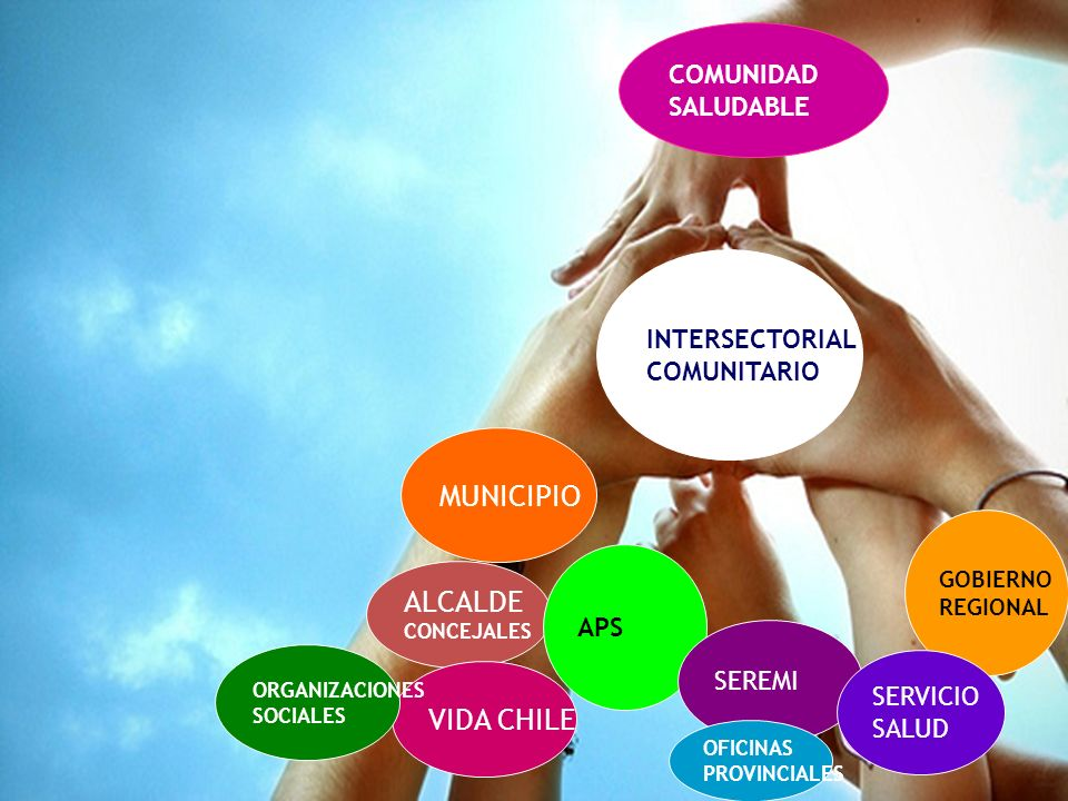 MUNICIPIO ALCALDE VIDA CHILE COMUNIDAD SALUDABLE INTERSECTORIAL
