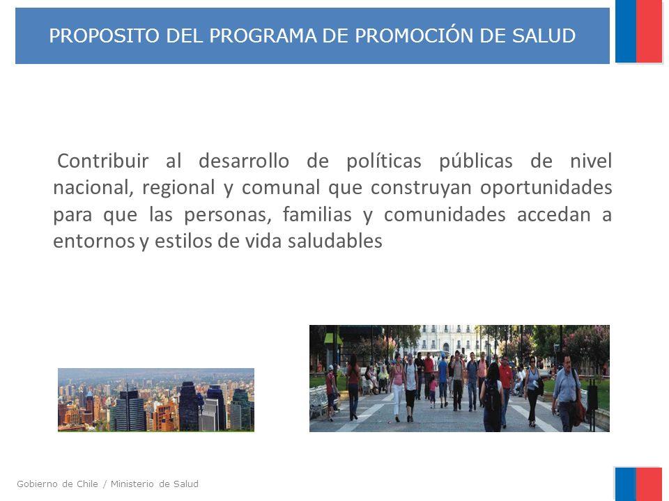 PROPOSITO DEL PROGRAMA DE PROMOCIÓN DE SALUD