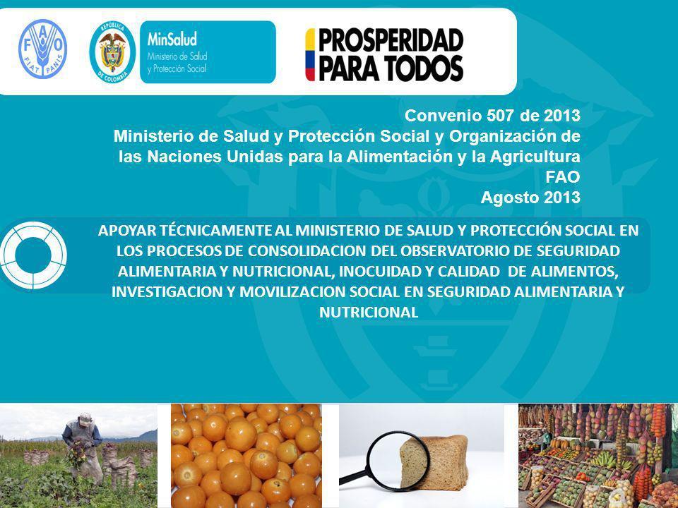Convenio 507 de 2013 Ministerio de Salud y Protección Social y Organización de las Naciones Unidas para la Alimentación y la Agricultura FAO.