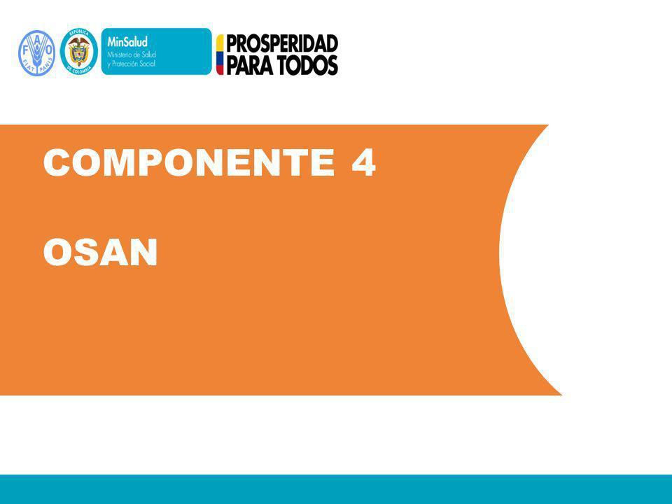 Componente 4 OSAN
