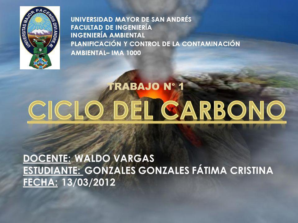 CICLO DEL CARBONO TRABAJO N° 1 DOCENTE: WALDO VARGAS