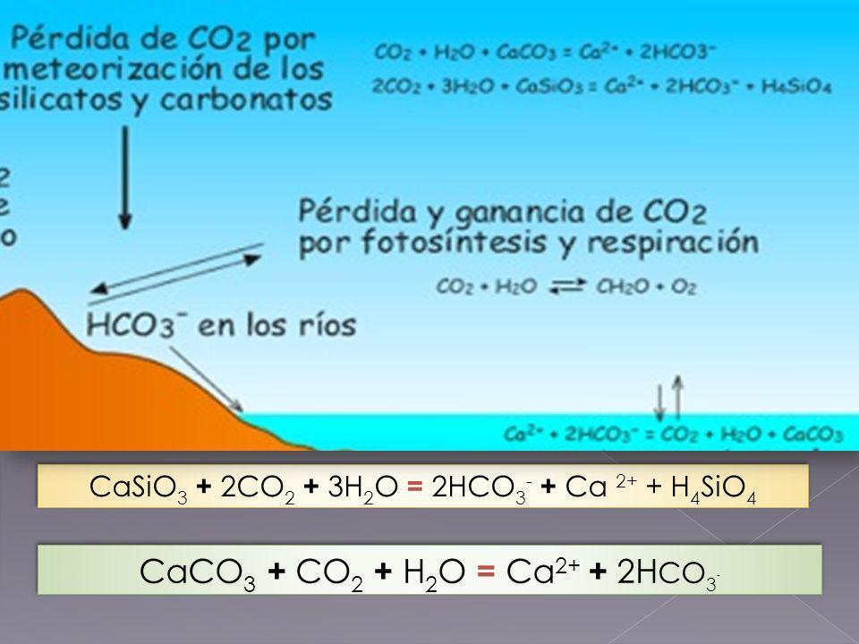 CICLO GEOLÓGICO DEL CARBONO
