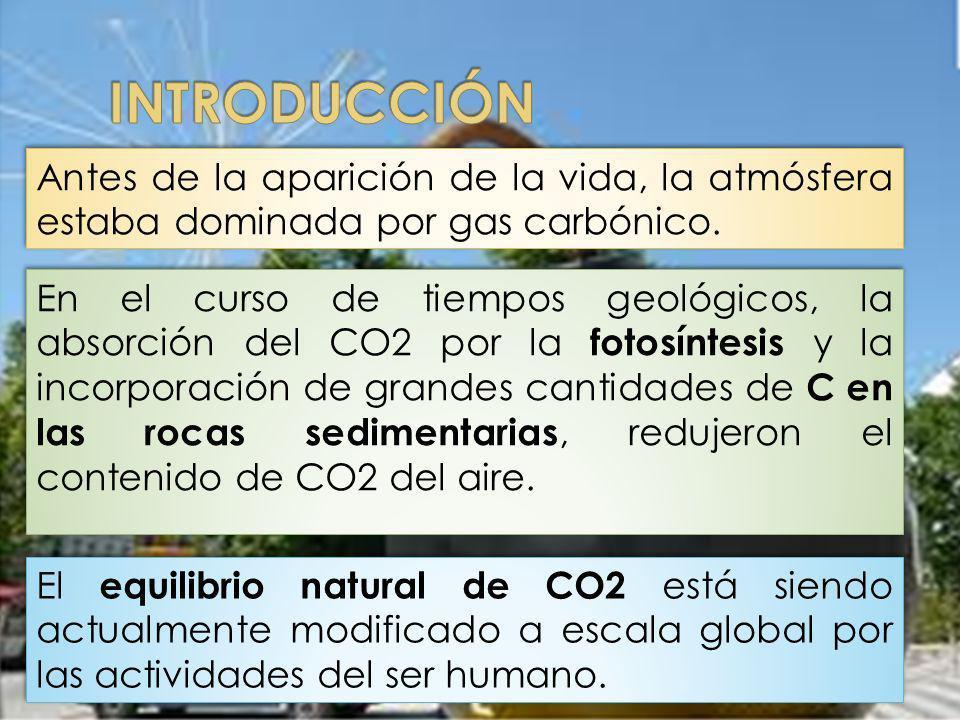 INTRODUCCIÓN Antes de la aparición de la vida, la atmósfera estaba dominada por gas carbónico.