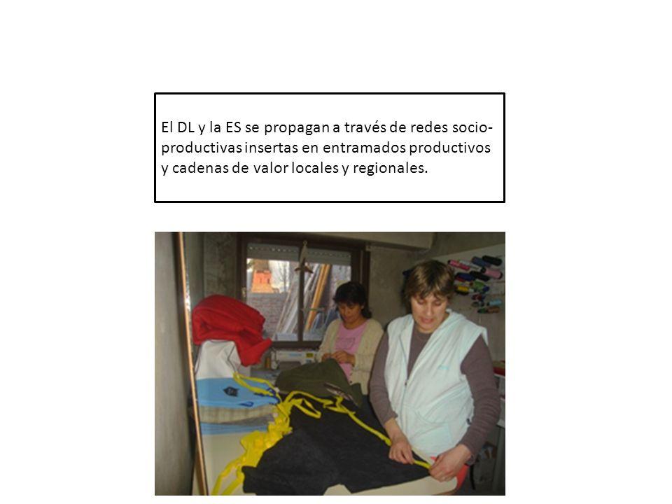 El DL y la ES se propagan a través de redes socio-productivas insertas en entramados productivos y cadenas de valor locales y regionales.