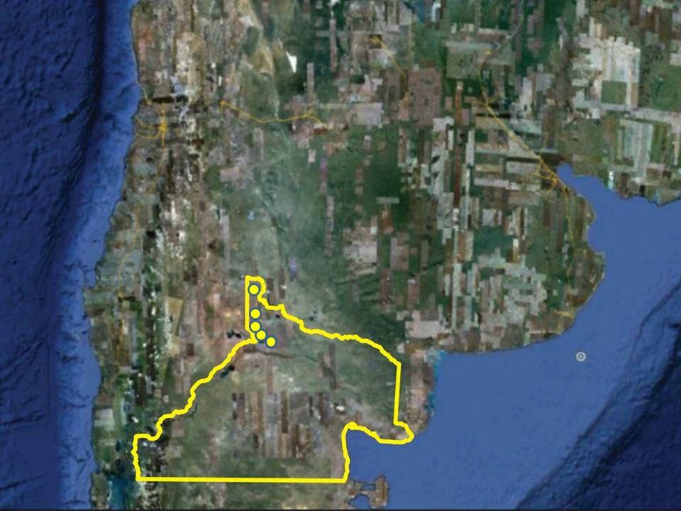 En la Provincia de Río Negro, norpatagonia argentina.