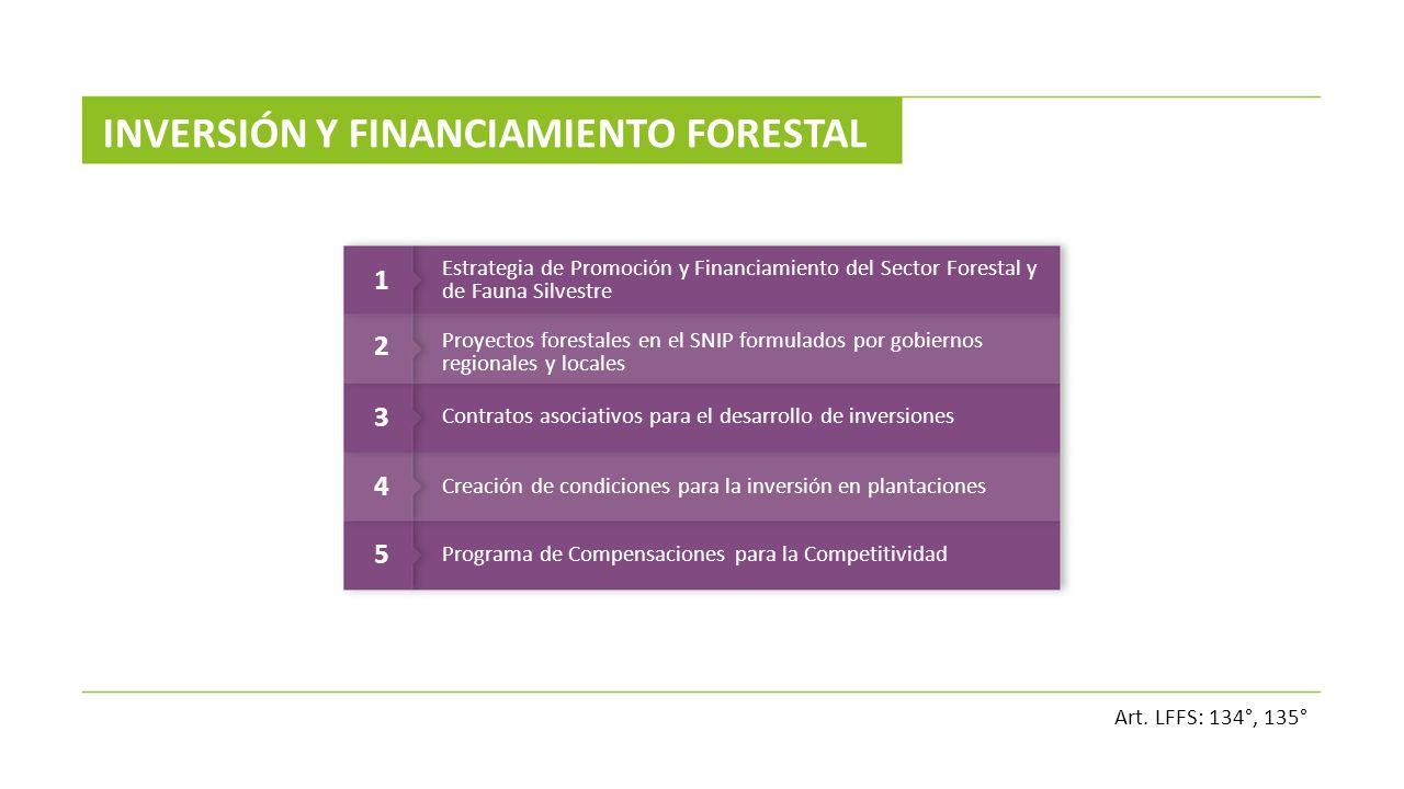 INVERSIÓN Y FINANCIAMIENTO FORESTAL