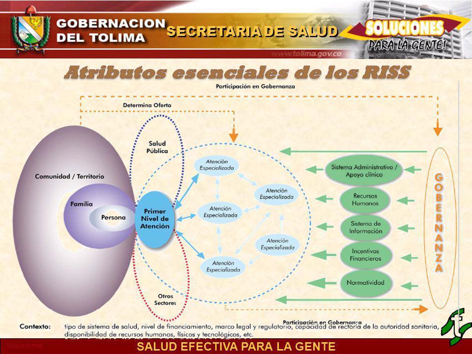 Atributos esenciales de los RISS