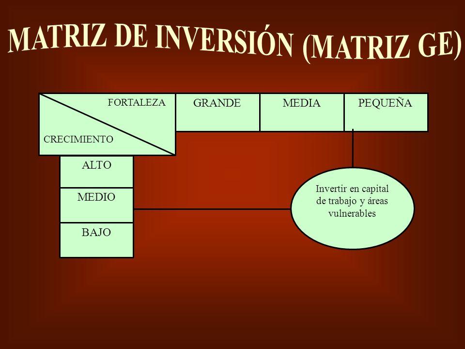 MATRIZ DE INVERSIÓN (MATRIZ GE)
