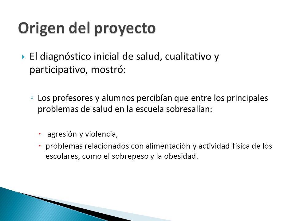 Origen del proyecto El diagnóstico inicial de salud, cualitativo y participativo, mostró: