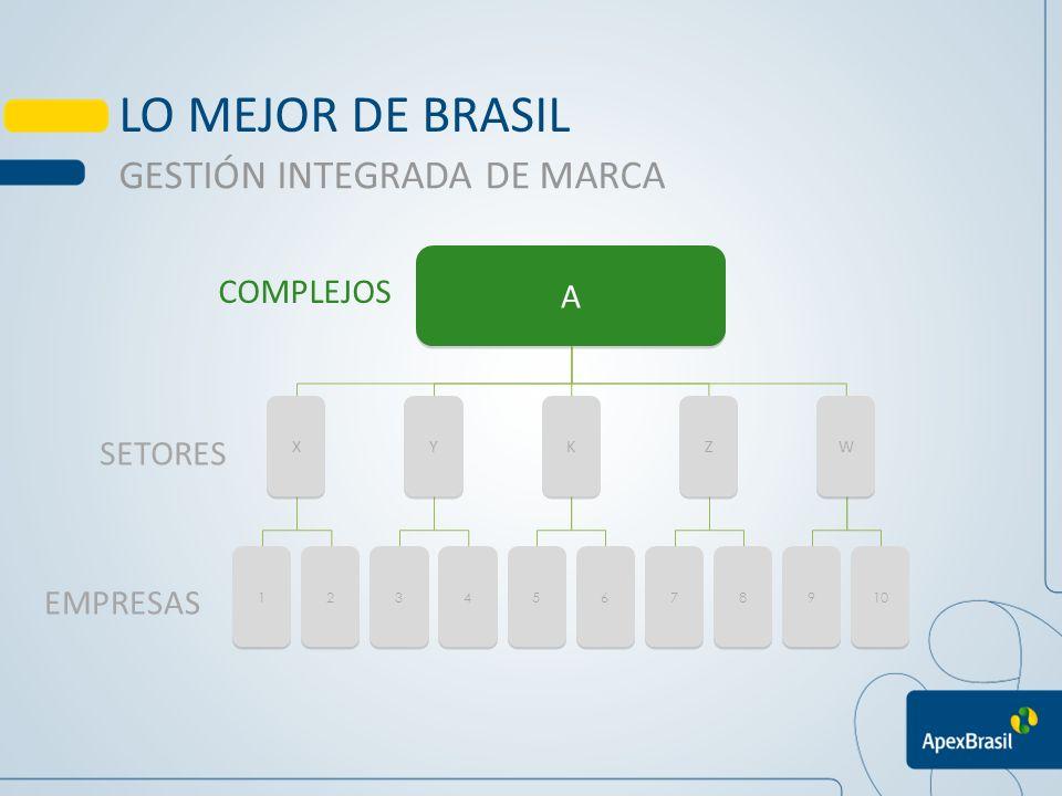 LO MEJOR DE BRASIL GESTIÓN INTEGRADA DE MARCA A COMPLEJOS SETORES