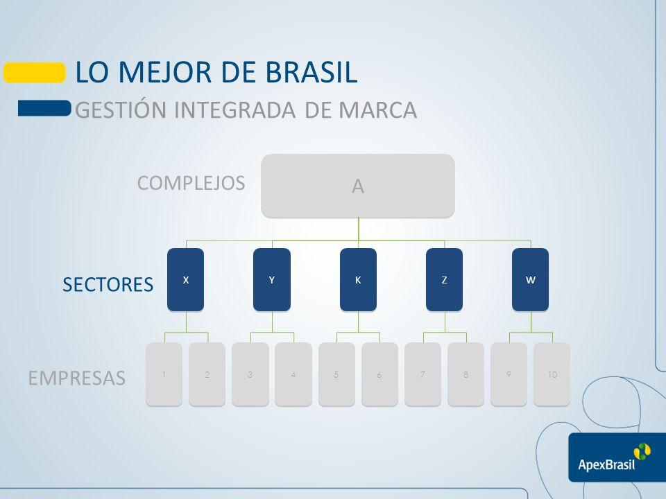 LO MEJOR DE BRASIL GESTIÓN INTEGRADA DE MARCA A COMPLEJOS SECTORES