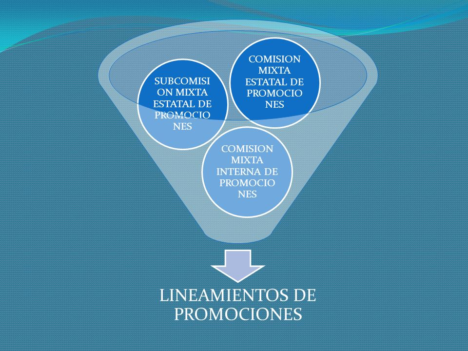 LINEAMIENTOS DE PROMOCIONES
