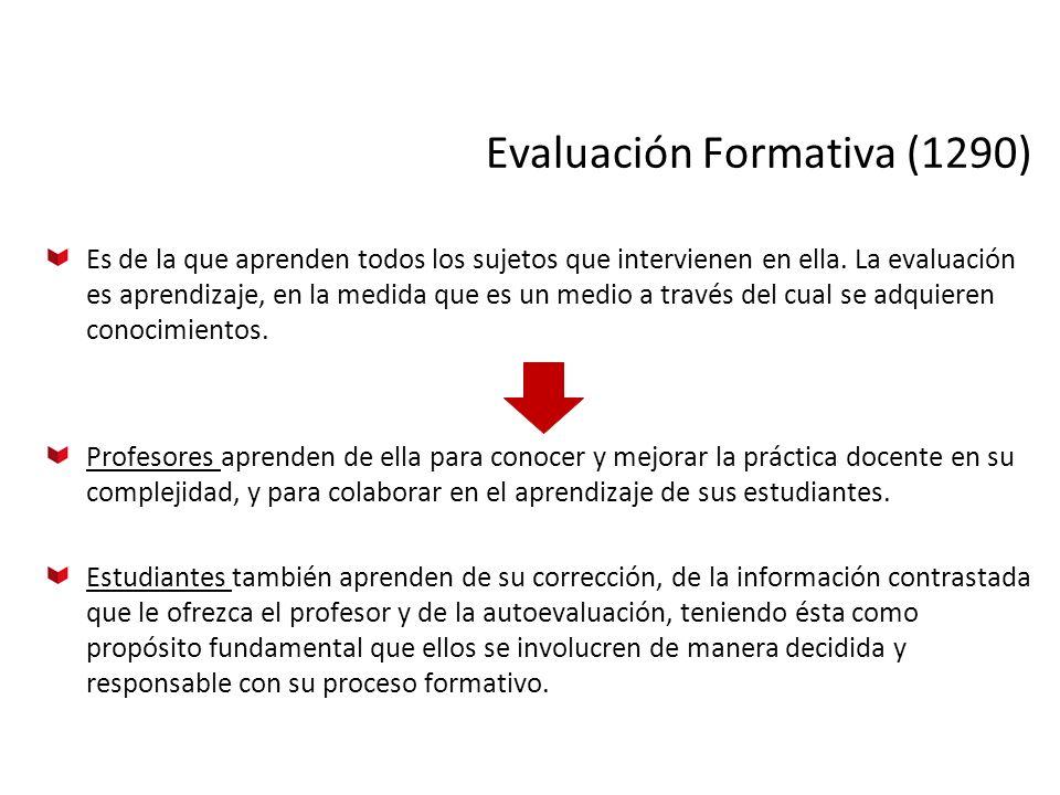 Evaluación Formativa (1290)