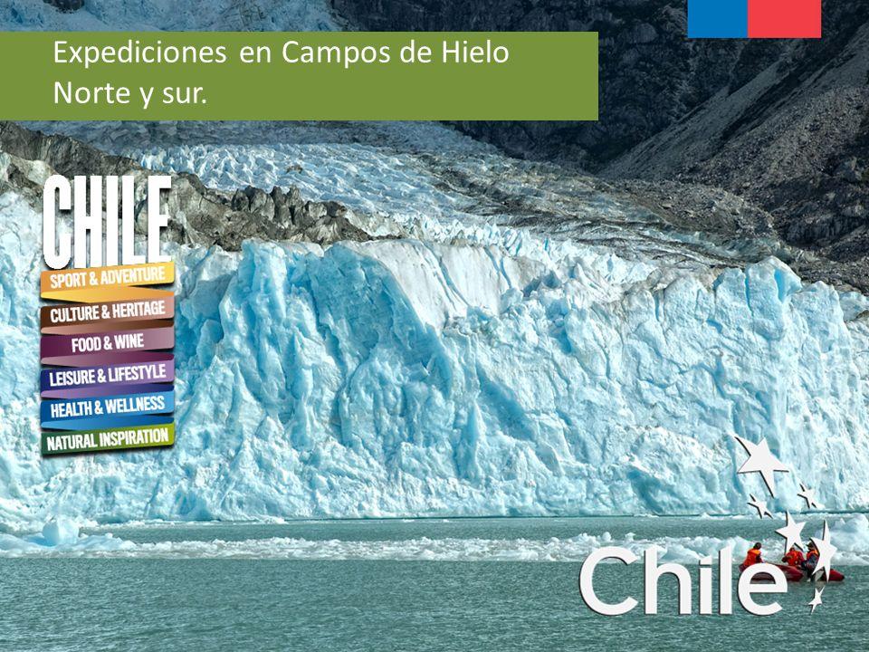 Expediciones en Campos de Hielo Norte y sur.