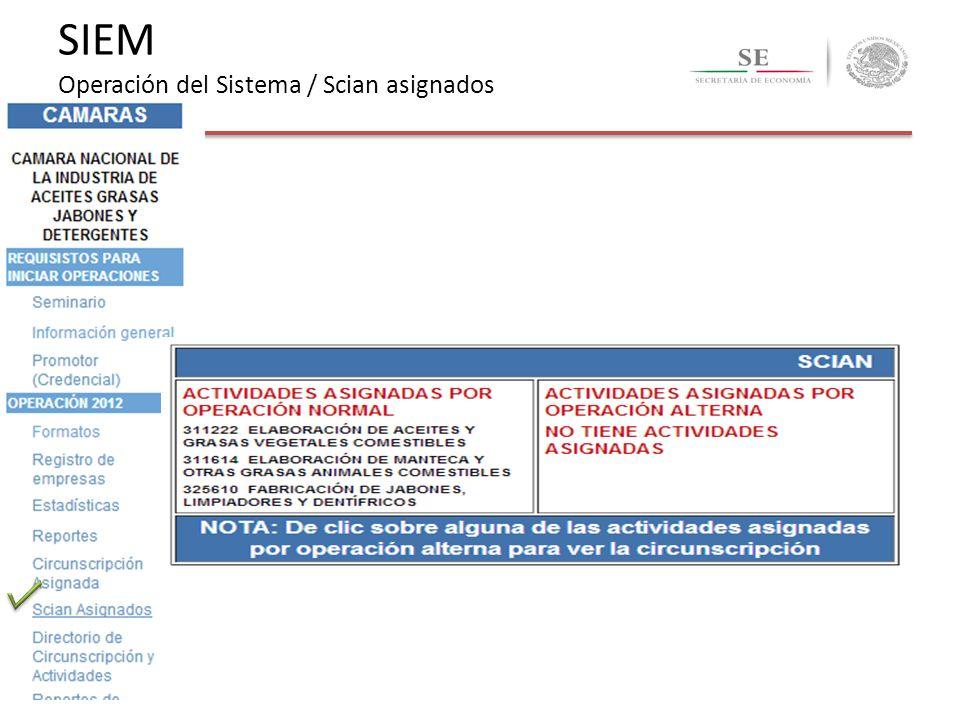 SIEM Operación del Sistema / Scian asignados