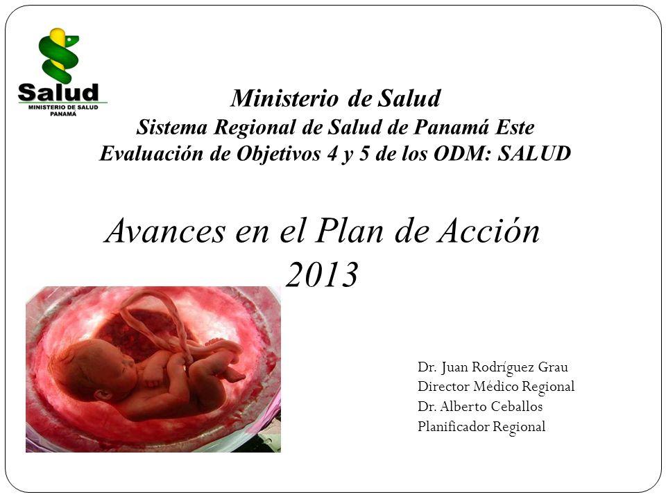 Avances en el Plan de Acción 2013