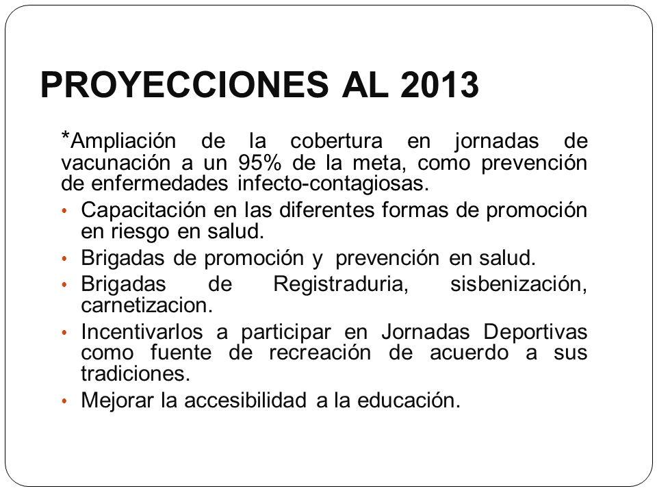 PROYECCIONES AL 2013