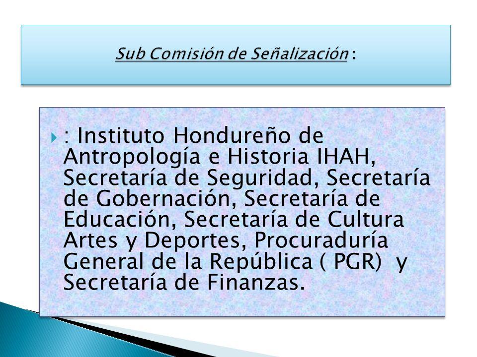 Sub Comisión de Señalización :