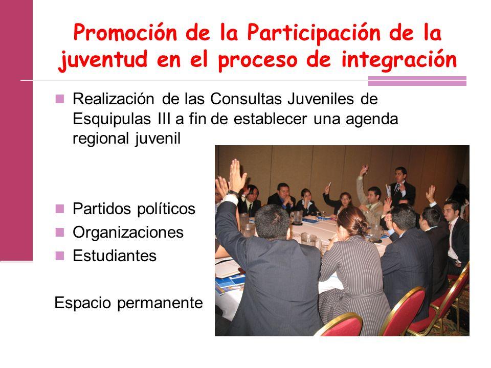 Promoción de la Participación de la juventud en el proceso de integración