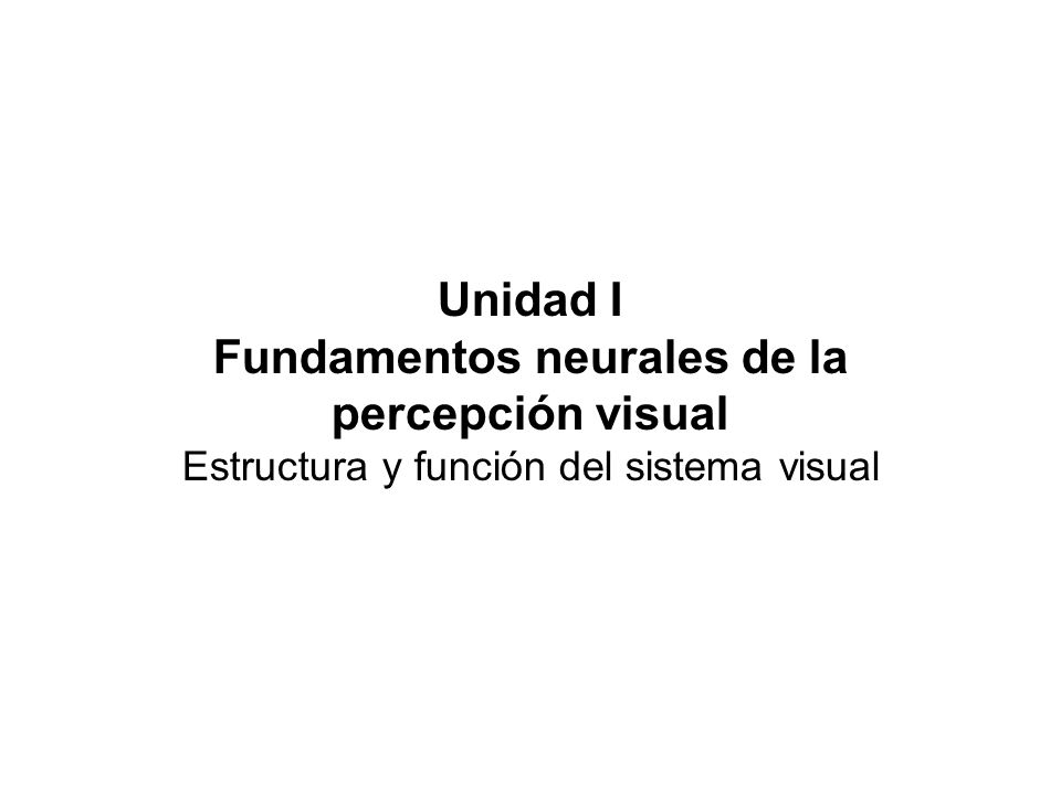 Fundamentos neurales de la percepción visual