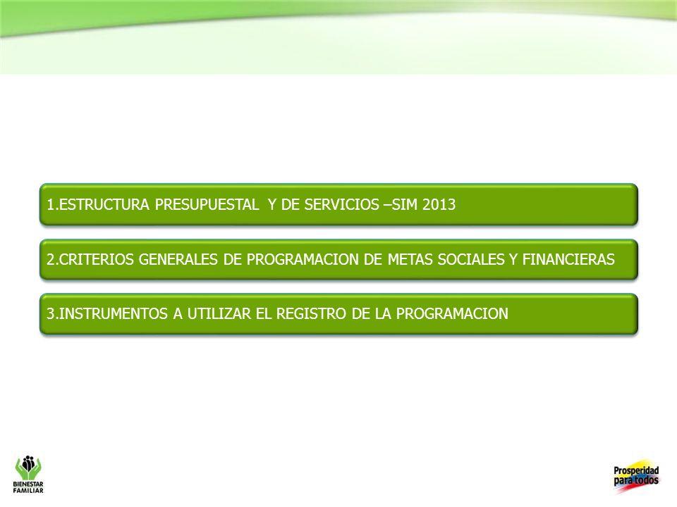 1.ESTRUCTURA PRESUPUESTAL Y DE SERVICIOS –SIM 2013