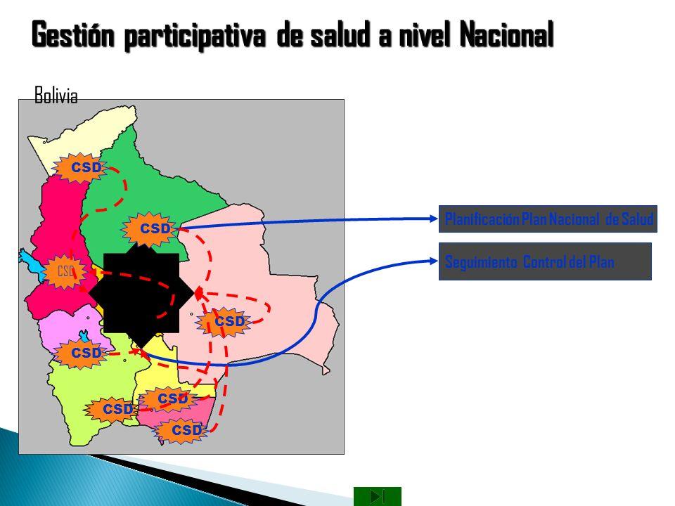 Gestión participativa de salud a nivel Nacional