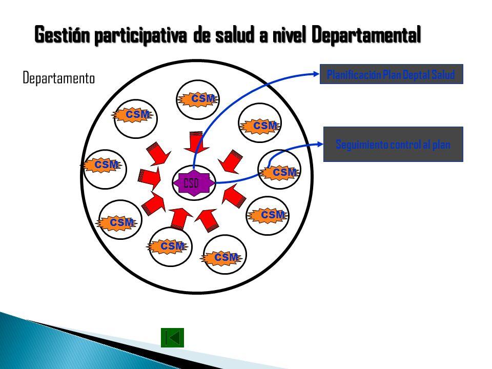 Planificación Plan Deptal Salud Seguimiento control al plan
