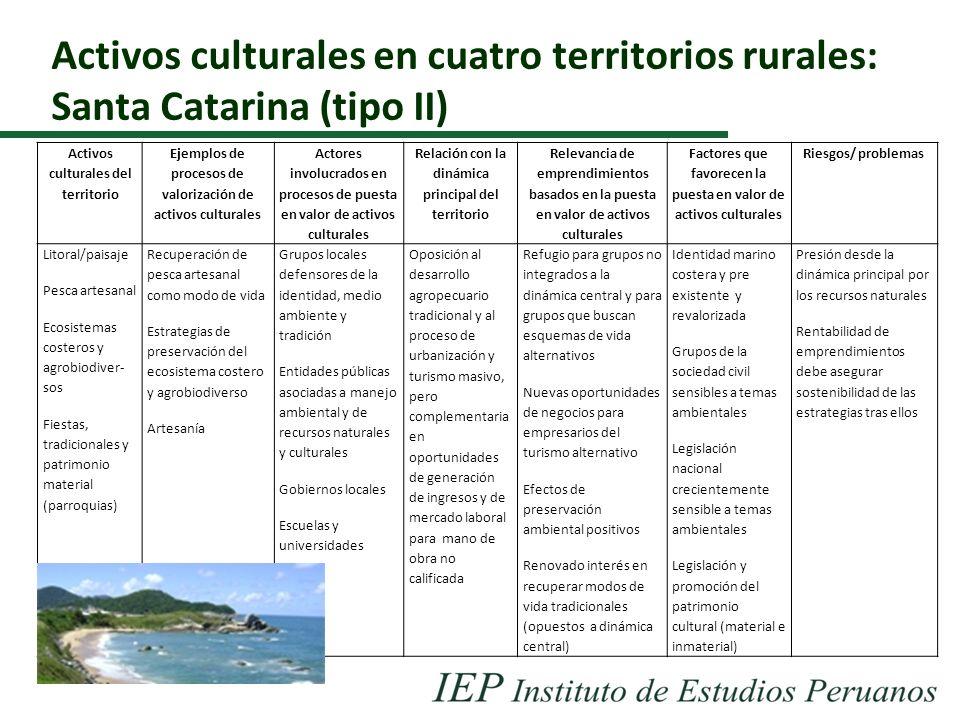 Activos culturales en cuatro territorios rurales: Santa Catarina (tipo II)