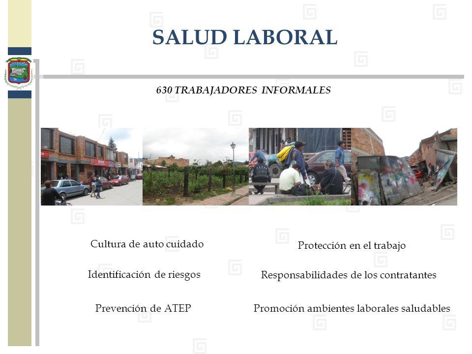 SALUD LABORAL 630 TRABAJADORES INFORMALES Cultura de auto cuidado