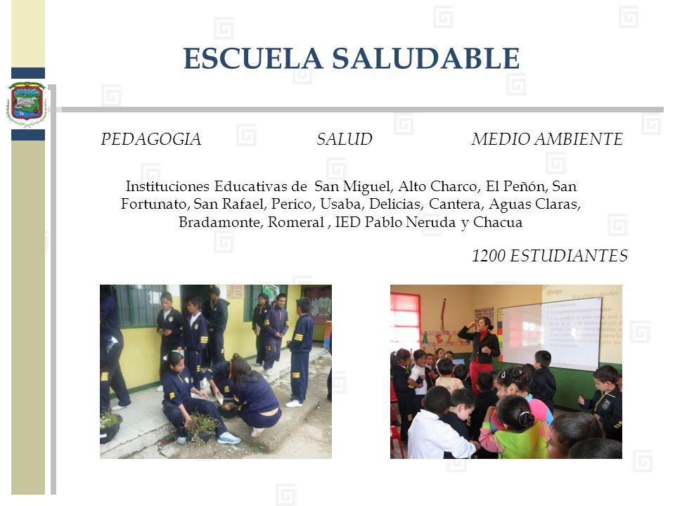 ESCUELA SALUDABLE PEDAGOGIA SALUD MEDIO AMBIENTE 1200 ESTUDIANTES