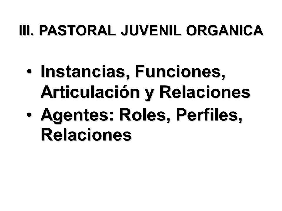 III. PASTORAL JUVENIL ORGANICA