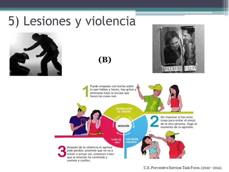 5) Lesiones y violencia (B)