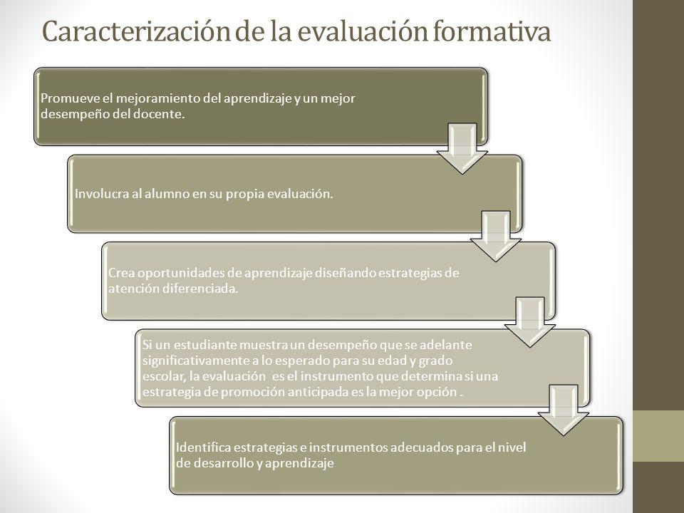 Caracterización de la evaluación formativa