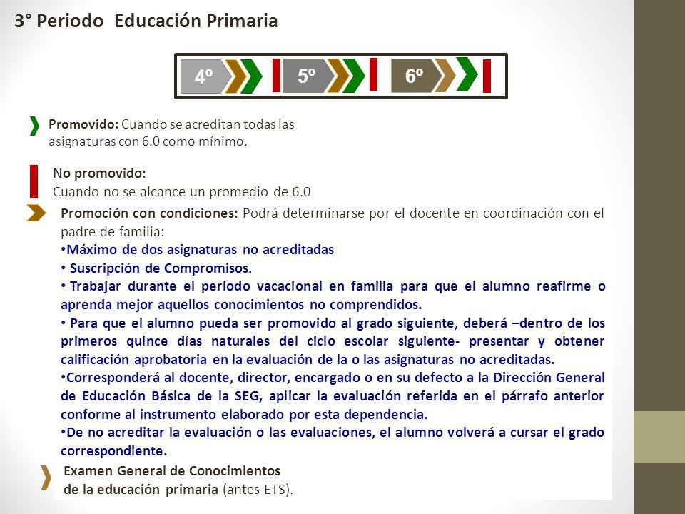 3° Periodo Educación Primaria