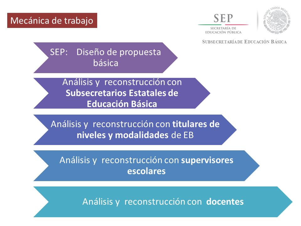 SEP: Diseño de propuesta básica