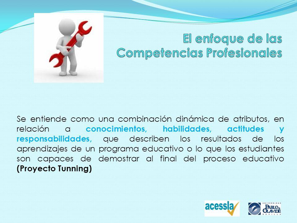 El enfoque de las Competencias Profesionales
