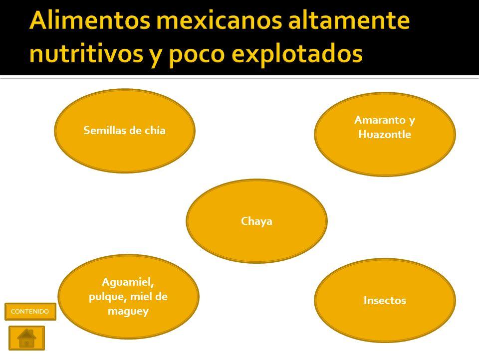 Alimentos mexicanos altamente nutritivos y poco explotados