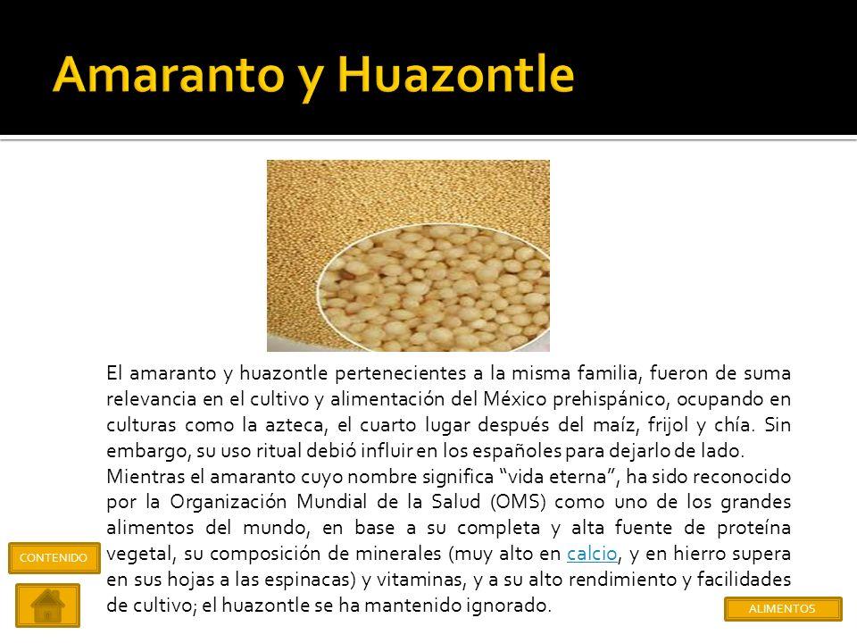 Amaranto y Huazontle
