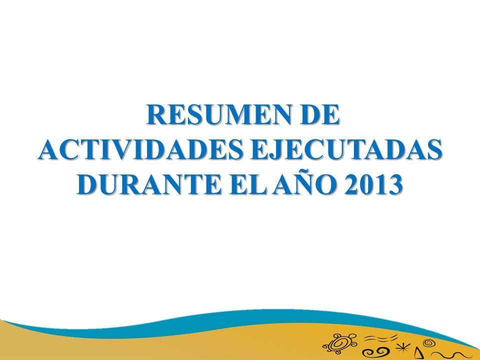 RESUMEN DE ACTIVIDADES EJECUTADAS DURANTE EL AÑO 2013