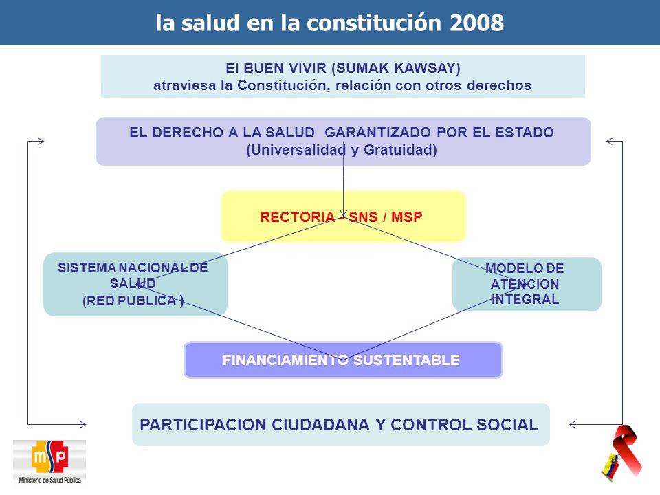 la salud en la constitución 2008