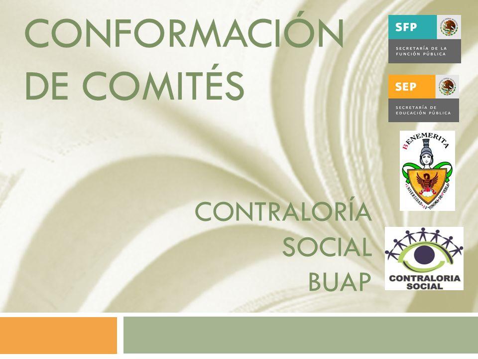 CONFORMACIÓN DE Comités