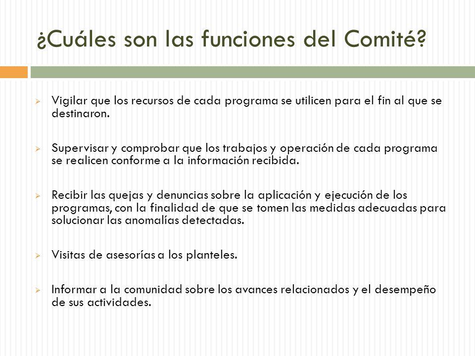 ¿Cuáles son las funciones del Comité