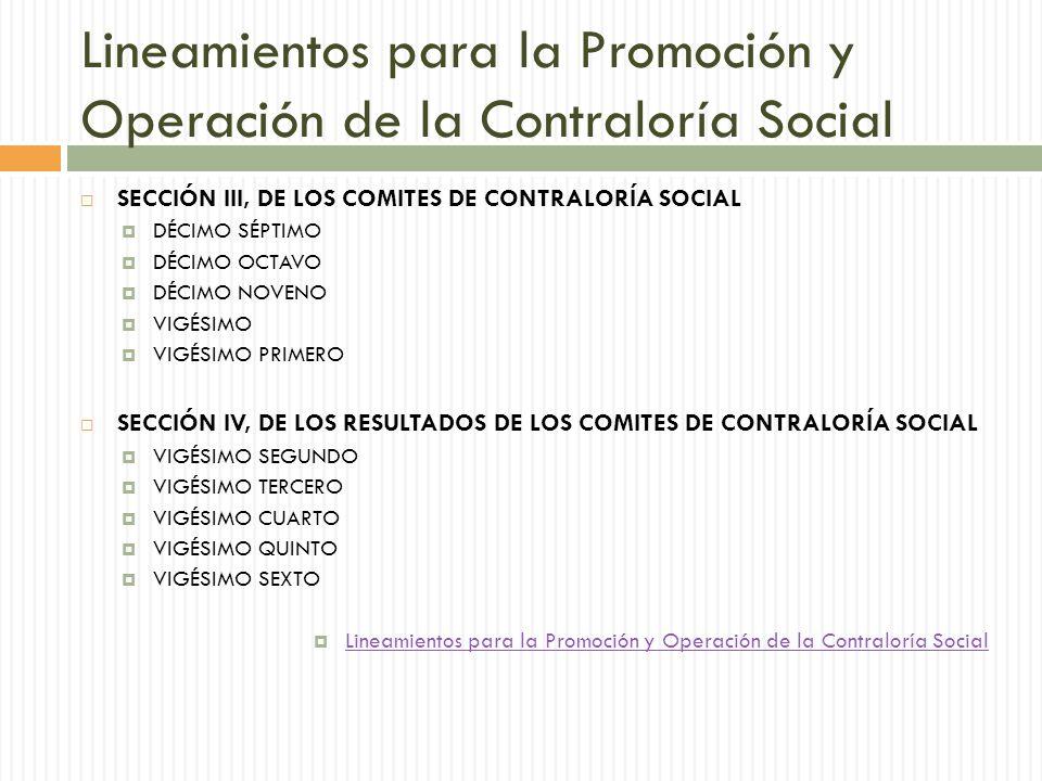 Lineamientos para la Promoción y Operación de la Contraloría Social