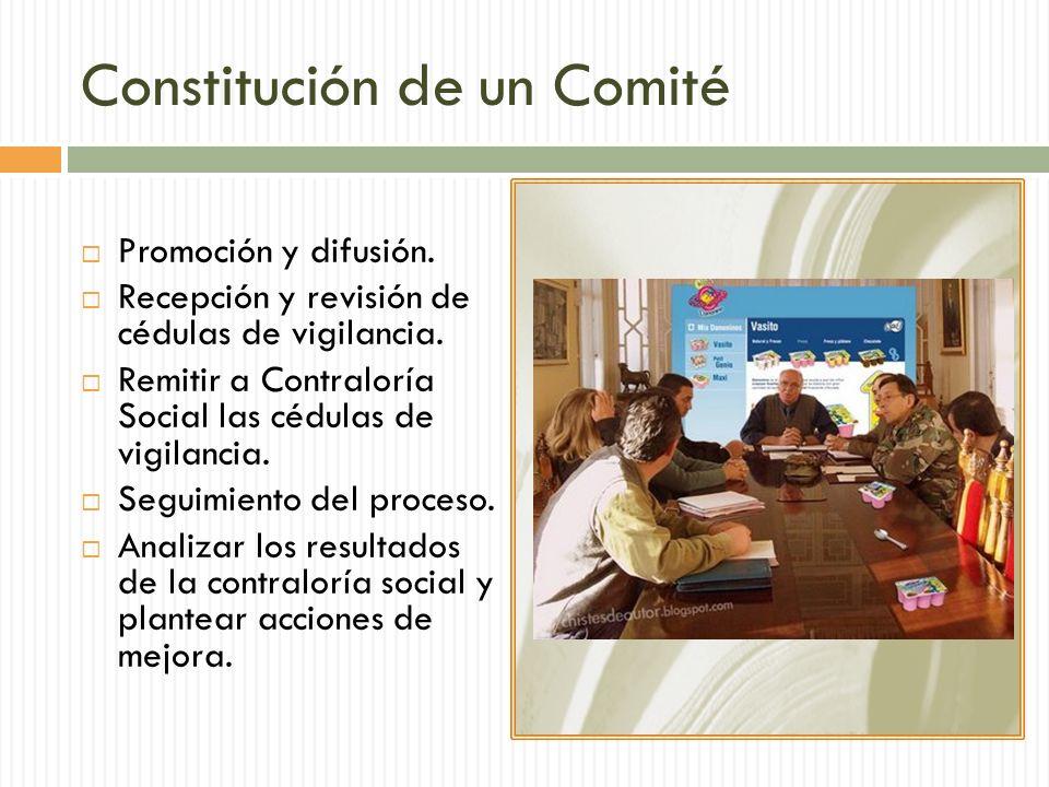 Constitución de un Comité
