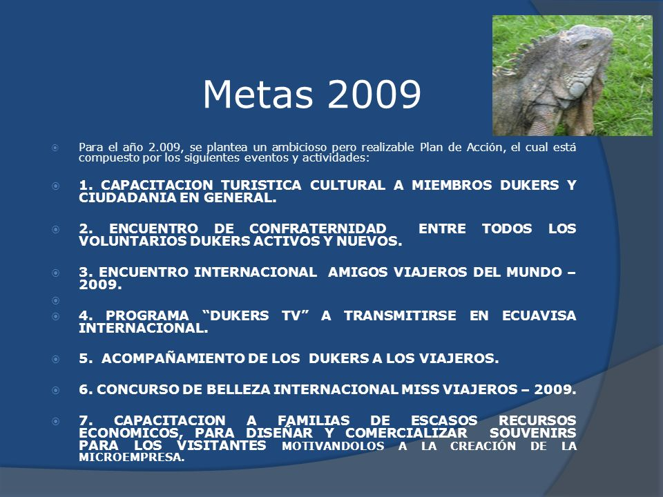 Metas 2009